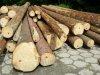 Drevdom © - Maisons en bois